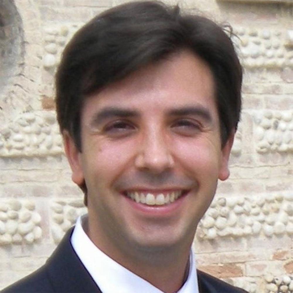 Dante Mantini, PhD