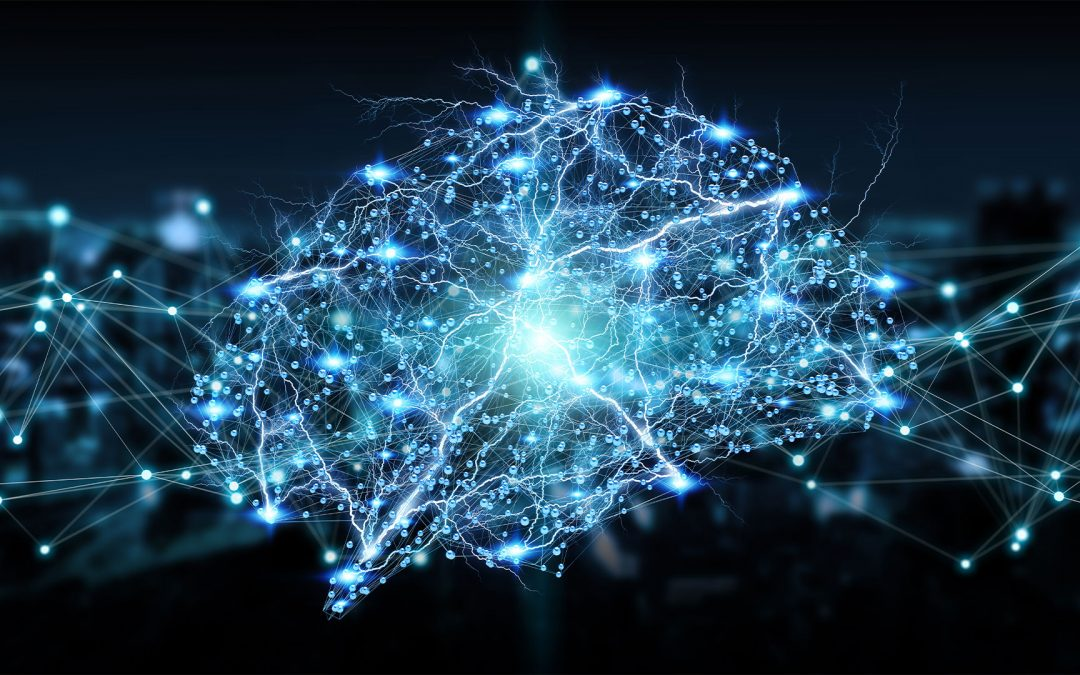 Brain connectivity in disorders of consciousness