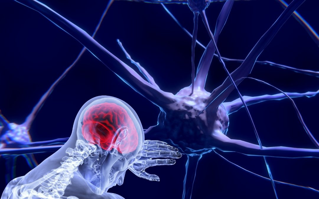 Apathy & Impulsivity in Neurodegenerative Disorders