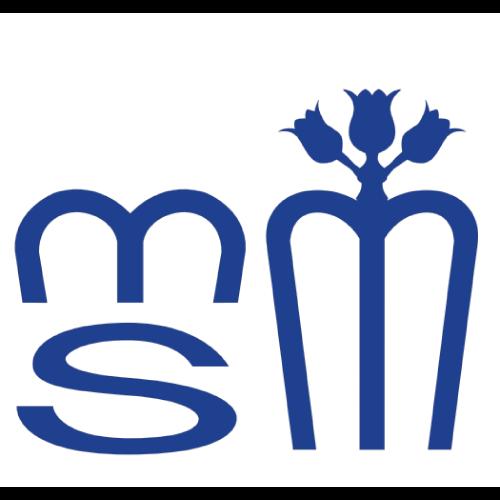 Logo Villa Salus